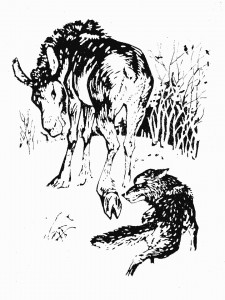 Волк и лосенок