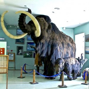 Музею 45 лет